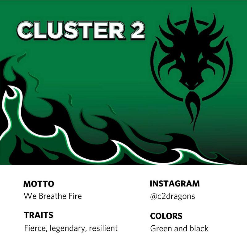 Cluster 2