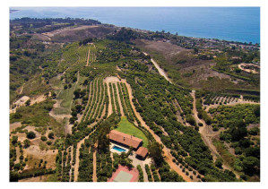 James's 90-acre avocado and lemon ranch in Santa Barbara