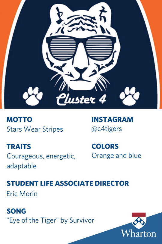 Cluster 4 Card